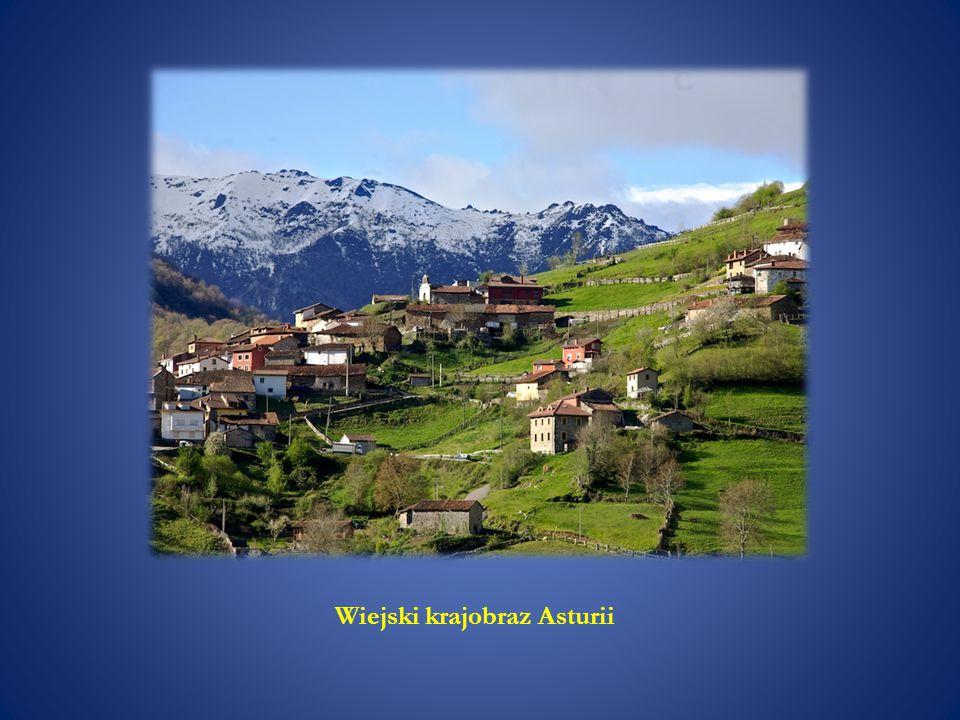 Wiejski krajobraz Asturii