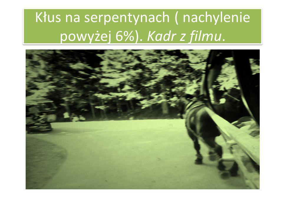 Kłus na serpentynach ( nachylenie powyżej 6%). Kadr z filmu.