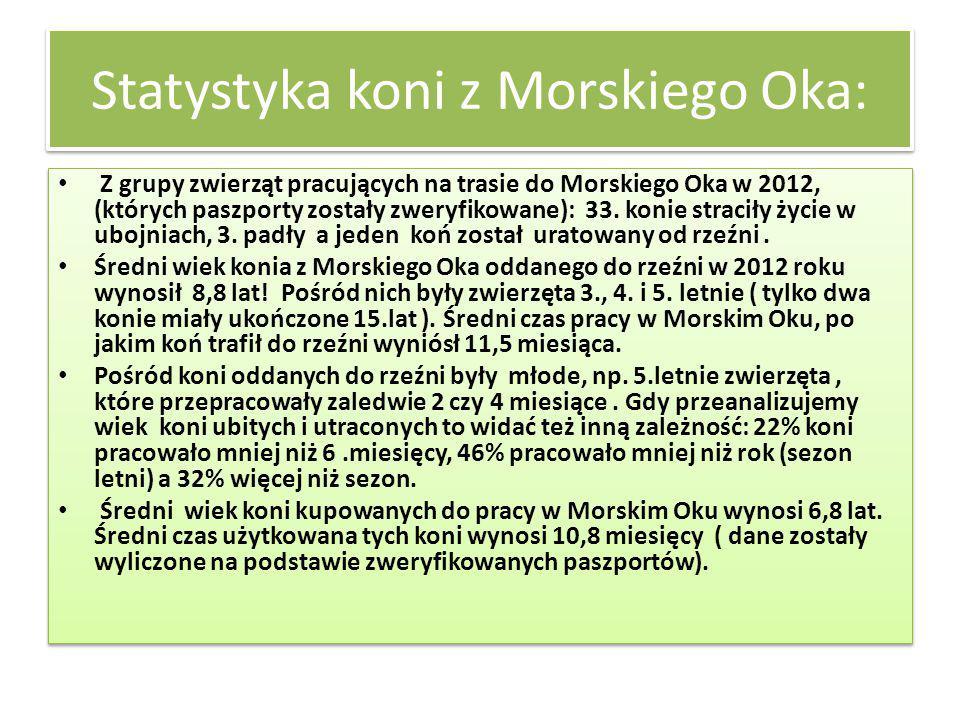 Statystyka koni z Morskiego Oka: