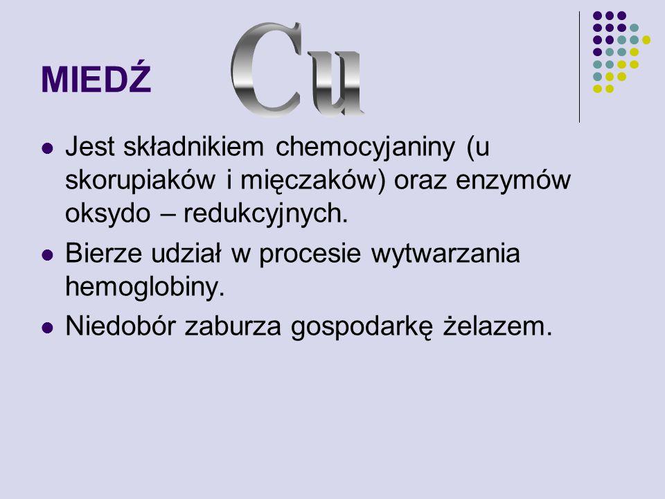 MIEDŹ Cu. Jest składnikiem chemocyjaniny (u skorupiaków i mięczaków) oraz enzymów oksydo – redukcyjnych.