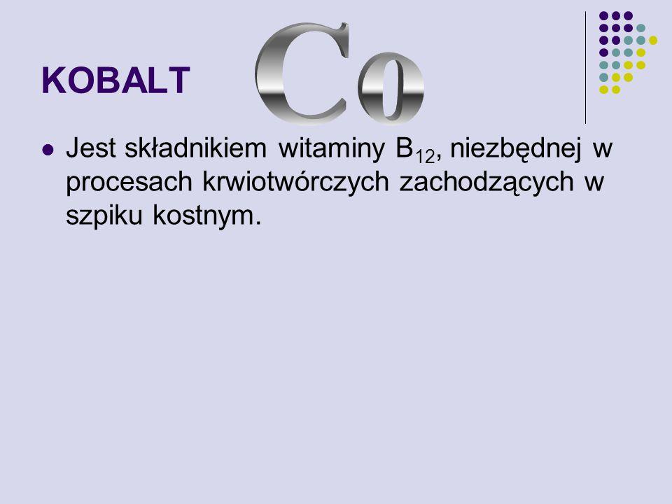 KOBALT Co.