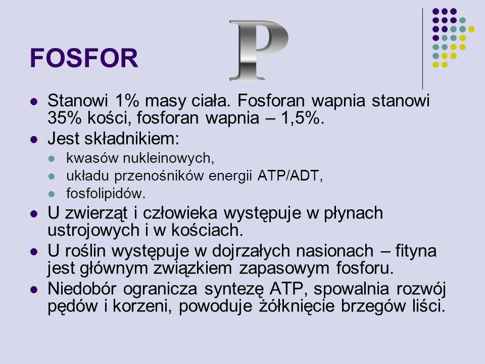 FOSFOR P. Stanowi 1% masy ciała. Fosforan wapnia stanowi 35% kości, fosforan wapnia – 1,5%. Jest składnikiem: