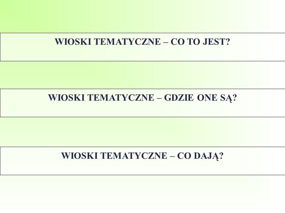 WIOSKI TEMATYCZNE – CO TO JEST