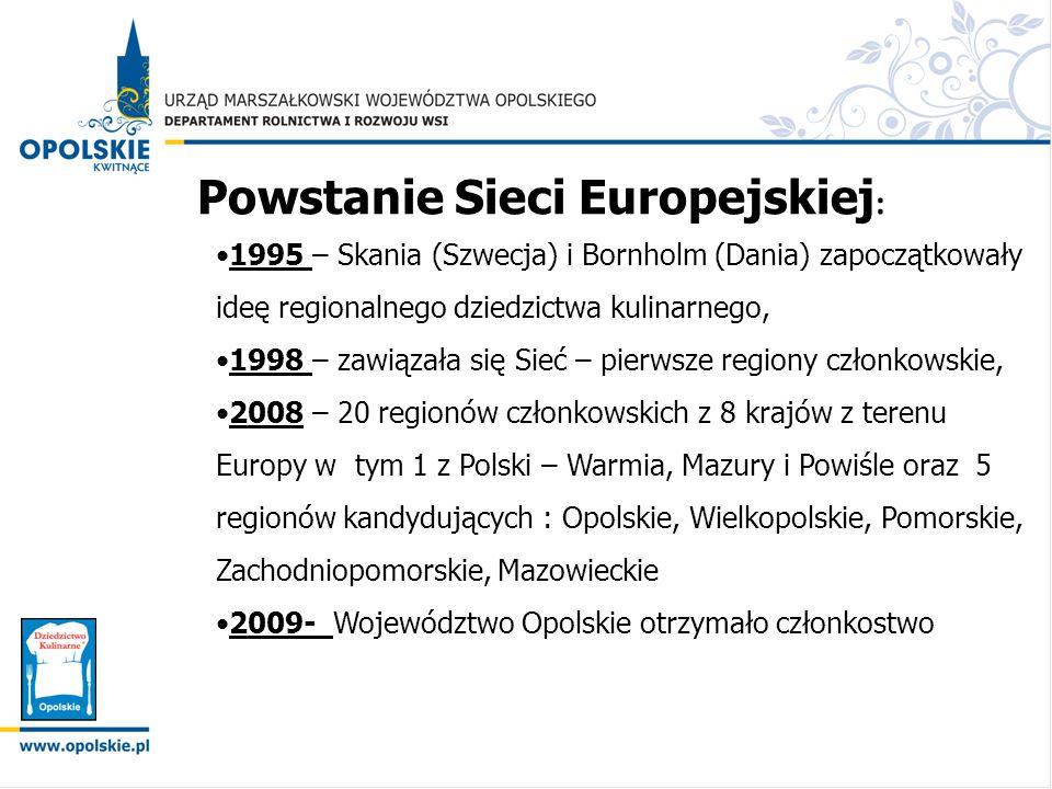 Powstanie Sieci Europejskiej: