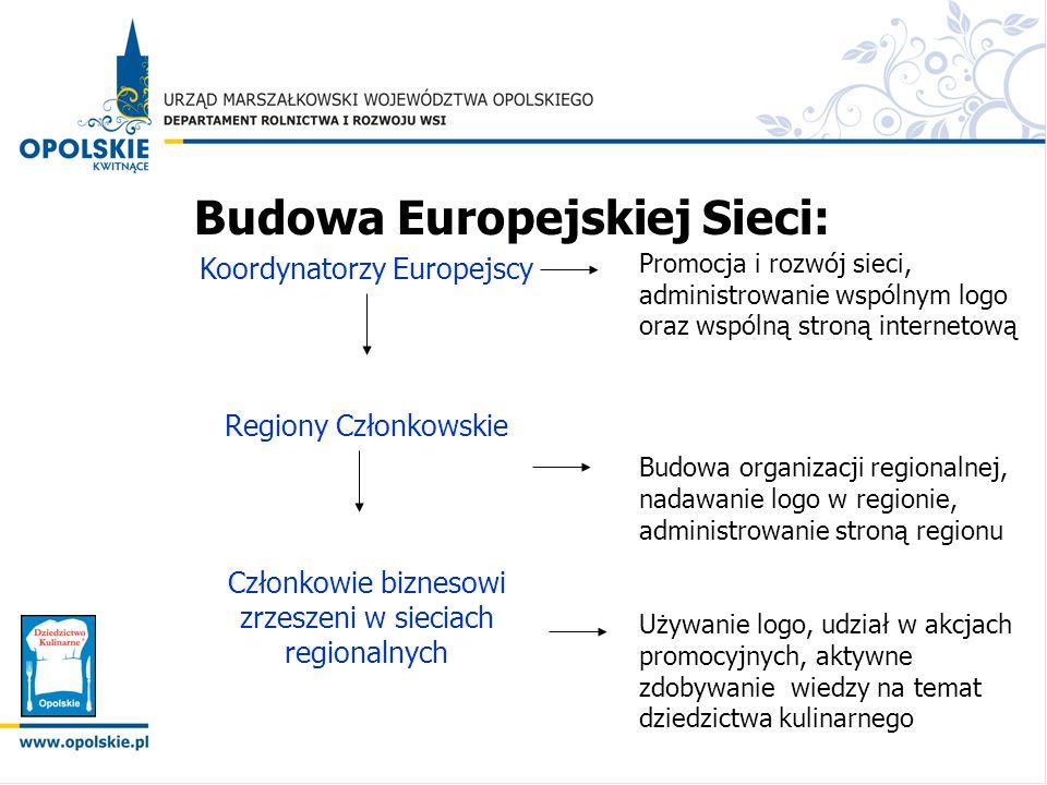 Budowa Europejskiej Sieci: