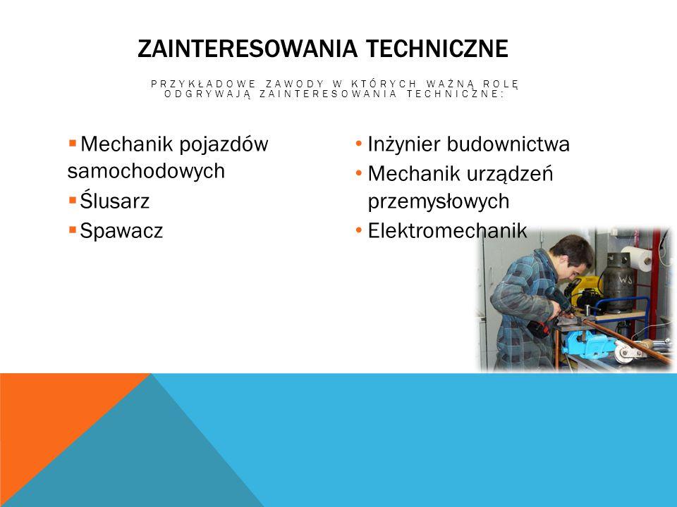 Zainteresowania Techniczne