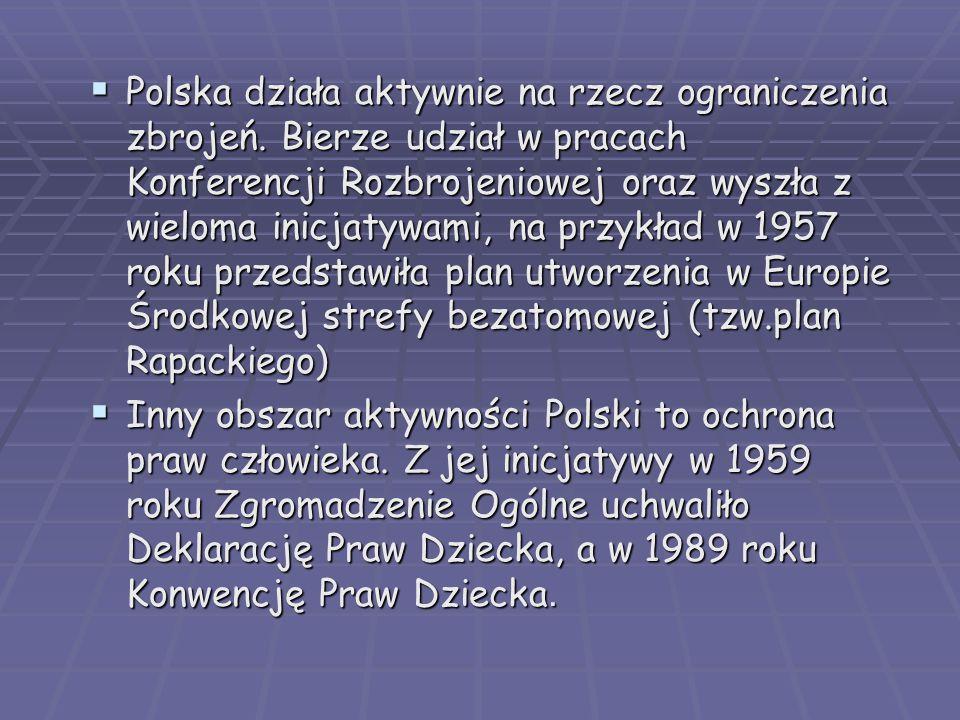 Polska działa aktywnie na rzecz ograniczenia zbrojeń
