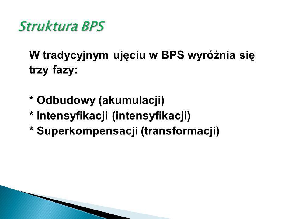 Struktura BPS * Odbudowy (akumulacji)