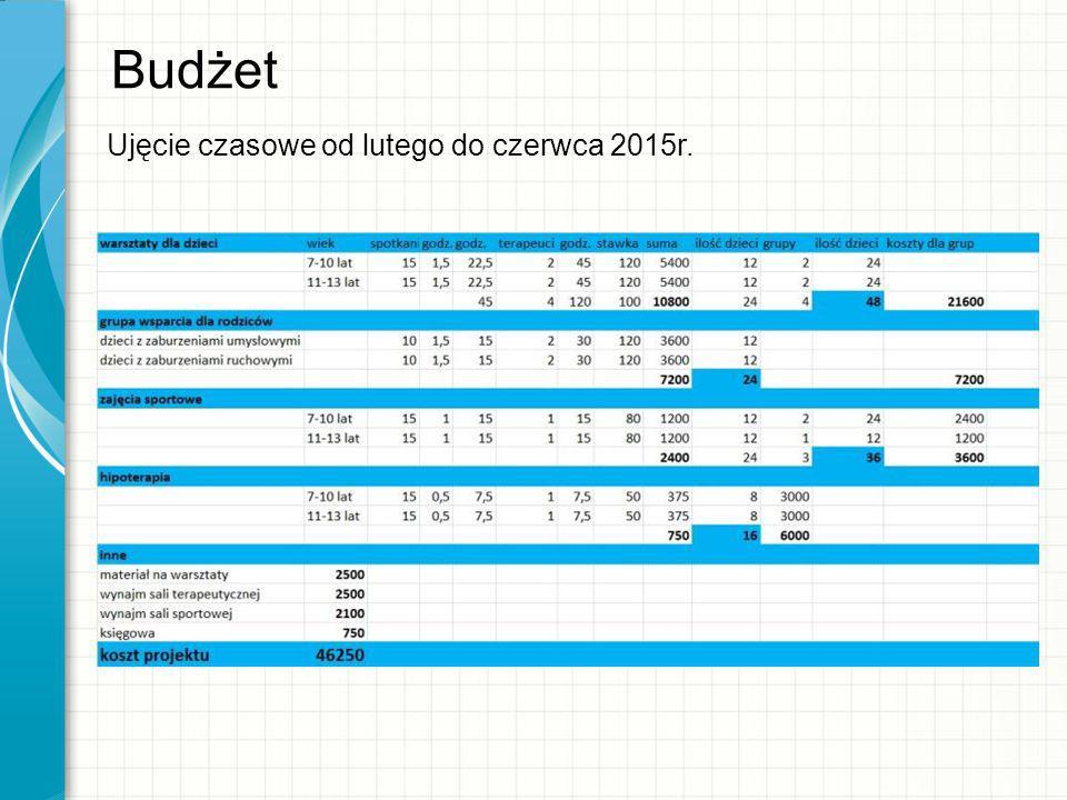 Budżet Ujęcie czasowe od lutego do czerwca 2015r.