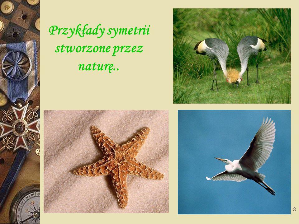 Przykłady symetrii stworzone przez naturę..