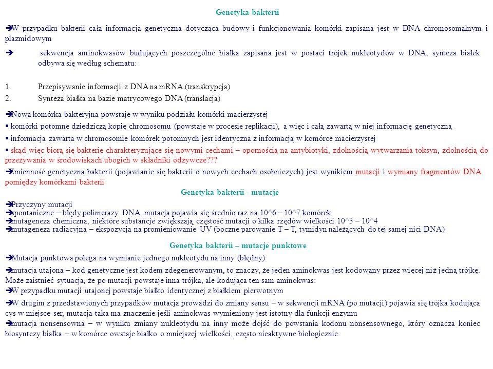 Genetyka bakterii - mutacje Genetyka bakterii – mutacje punktowe