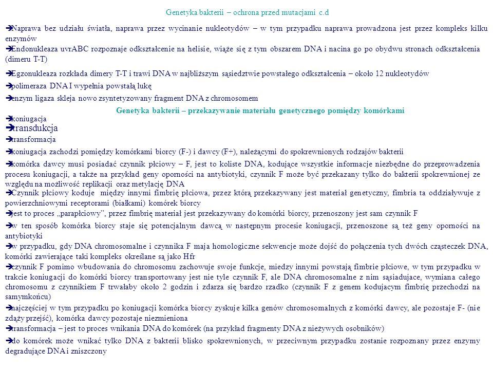 Genetyka bakterii – ochrona przed mutacjami c.d
