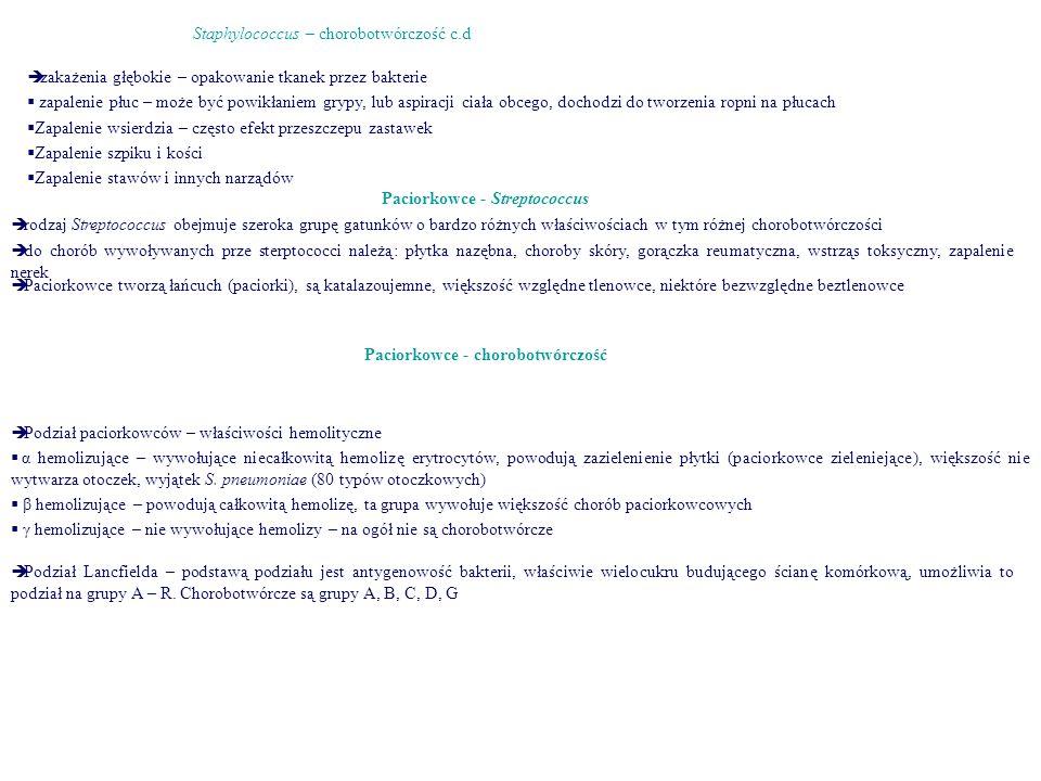 Paciorkowce - Streptococcus Paciorkowce - chorobotwórczość
