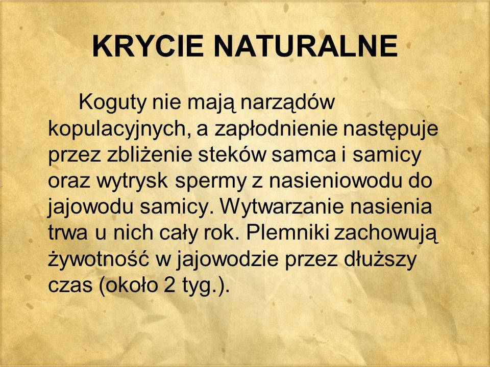 KRYCIE NATURALNE