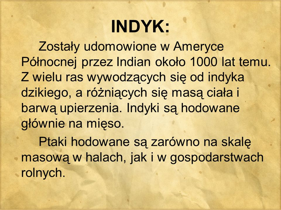 INDYK: