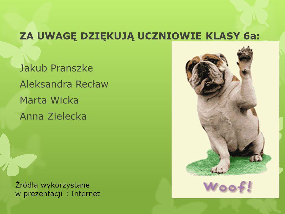 ZA UWAGĘ DZIĘKUJĄ UCZNIOWIE KLASY 6a: Jakub Pranszke Aleksandra Recław Marta Wicka Anna Zielecka