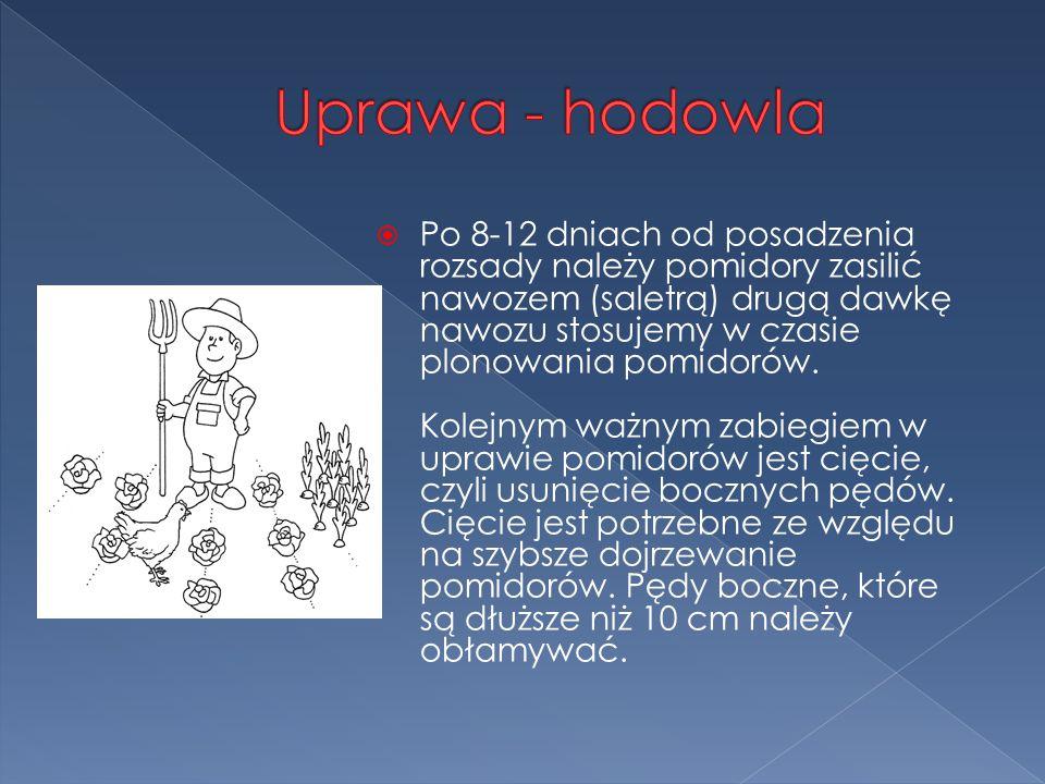 Uprawa - hodowla