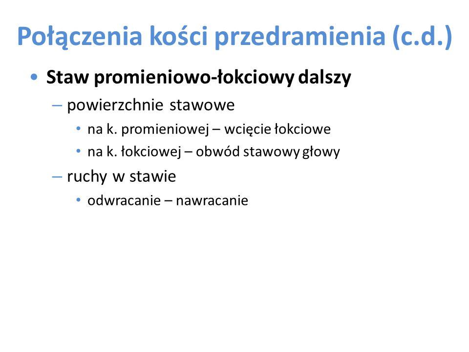 Połączenia kości przedramienia (c.d.)