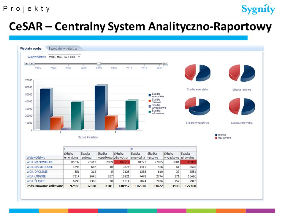 CeSAR – Centralny System Analityczno-Raportowy