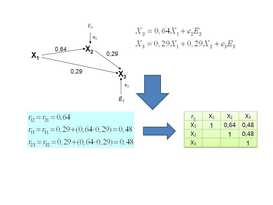 X1 X2 X3 0,29 0,64 e2 E3 E2 e3 rij X1 X2 X3 1 0,64 0,48