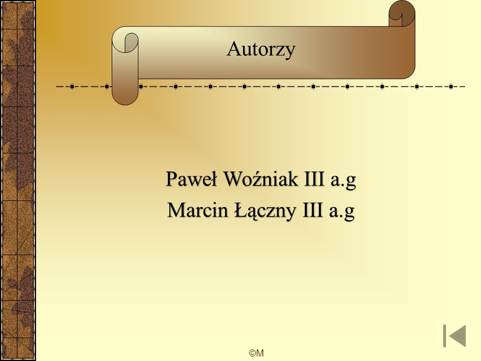 Autorzy Paweł Woźniak III a.g Marcin Łączny III a.g ©M