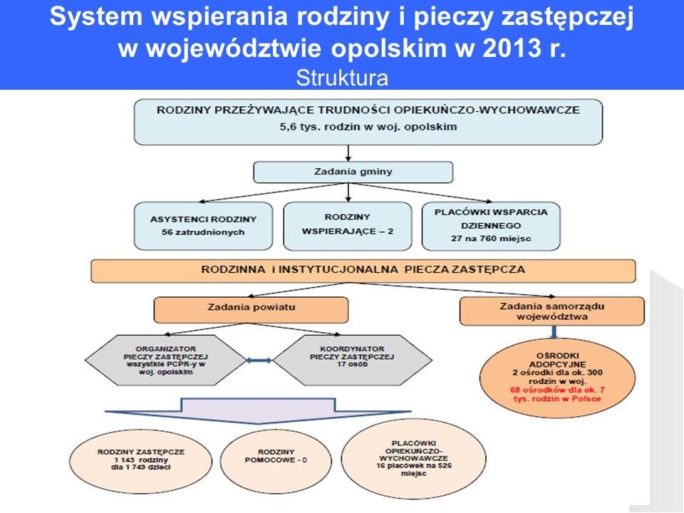 System wspierania rodziny i pieczy zastępczej w województwie opolskim w 2013 r. Struktura
