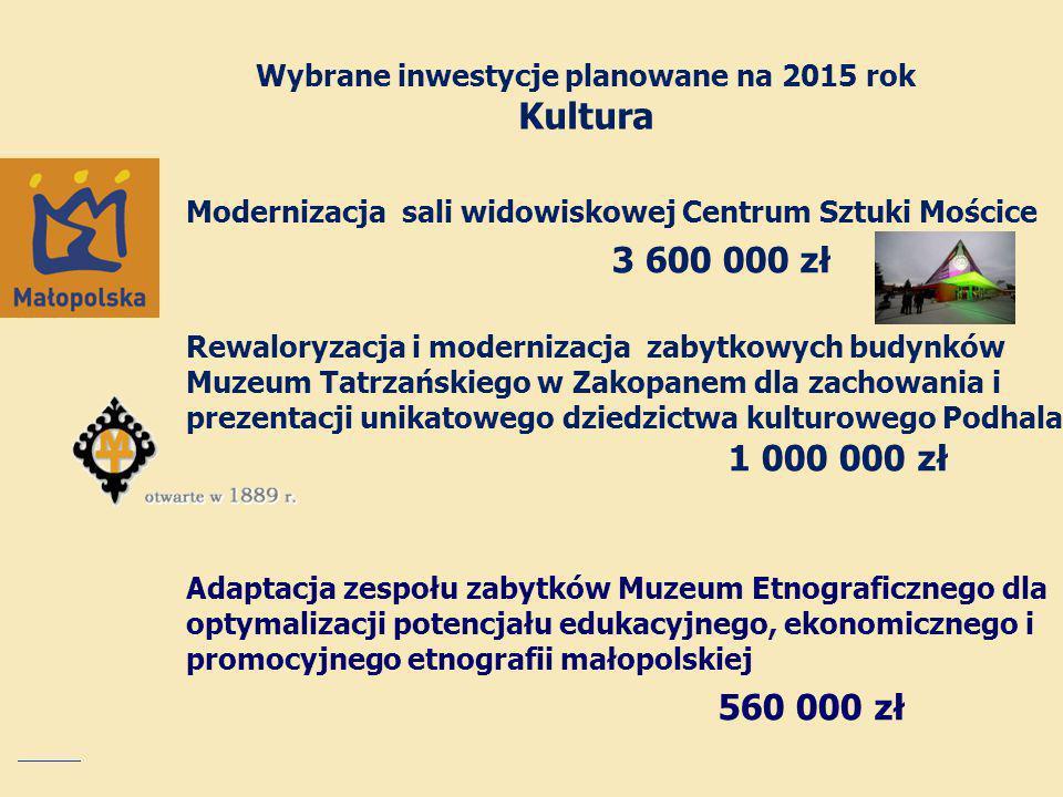 Wybrane inwestycje planowane na 2015 rok Kultura