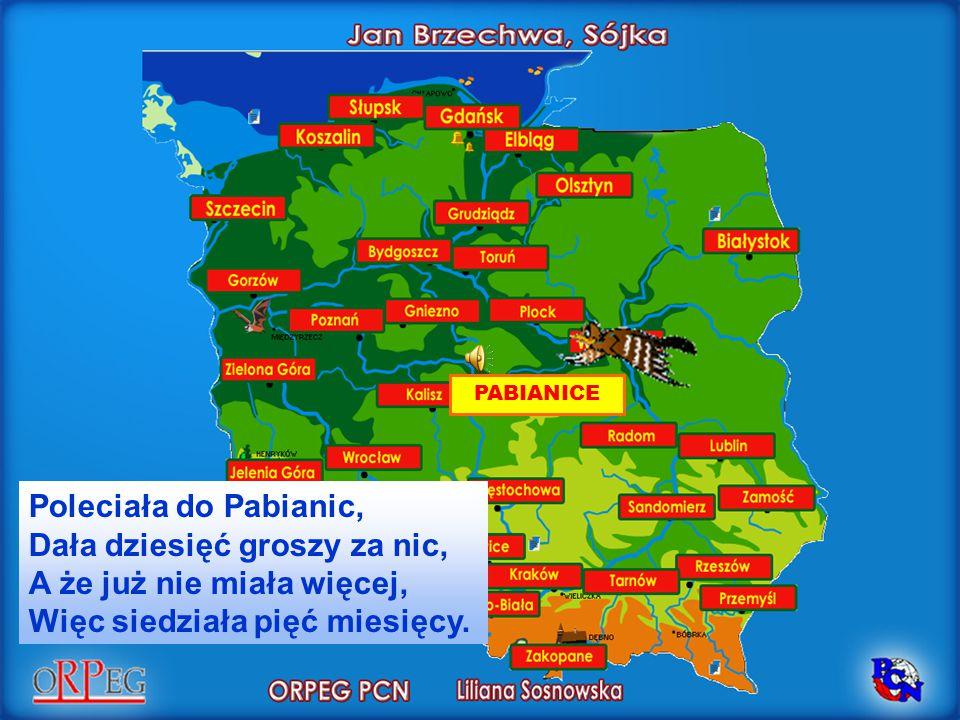 PABIANICE Poleciała do Pabianic, Dała dziesięć groszy za nic, A że już nie miała więcej, Więc siedziała pięć miesięcy.