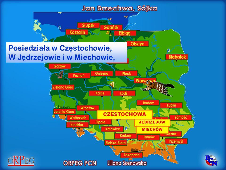 Posiedziała w Częstochowie, W Jędrzejowie i w Miechowie,