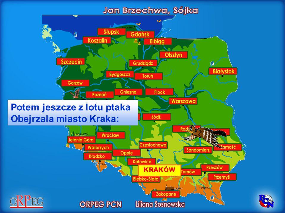 Potem jeszcze z lotu ptaka Obejrzała miasto Kraka: