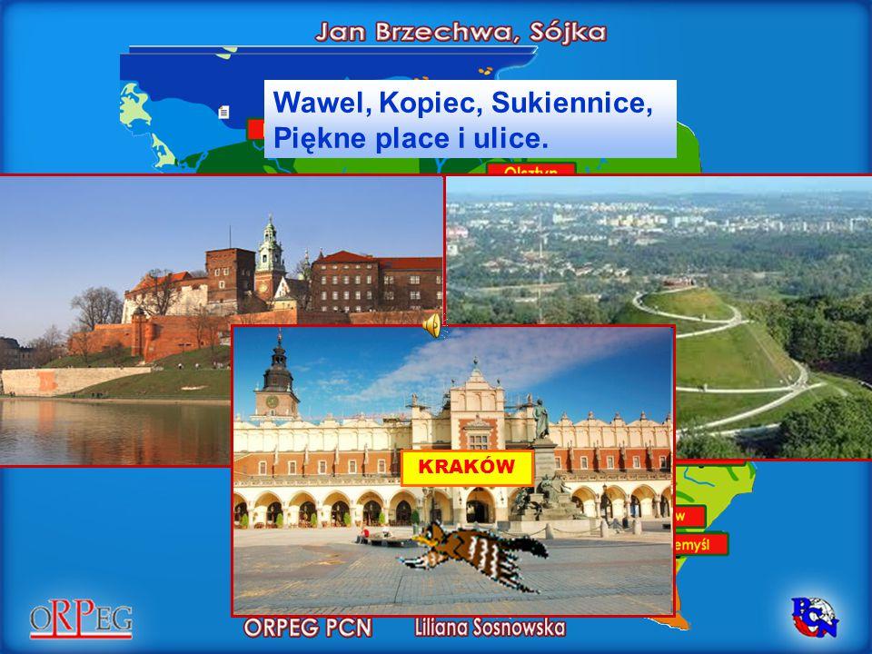 Wawel, Kopiec, Sukiennice, Piękne place i ulice.