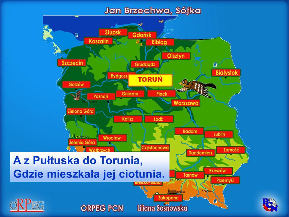 A z Pułtuska do Torunia, Gdzie mieszkała jej ciotunia.
