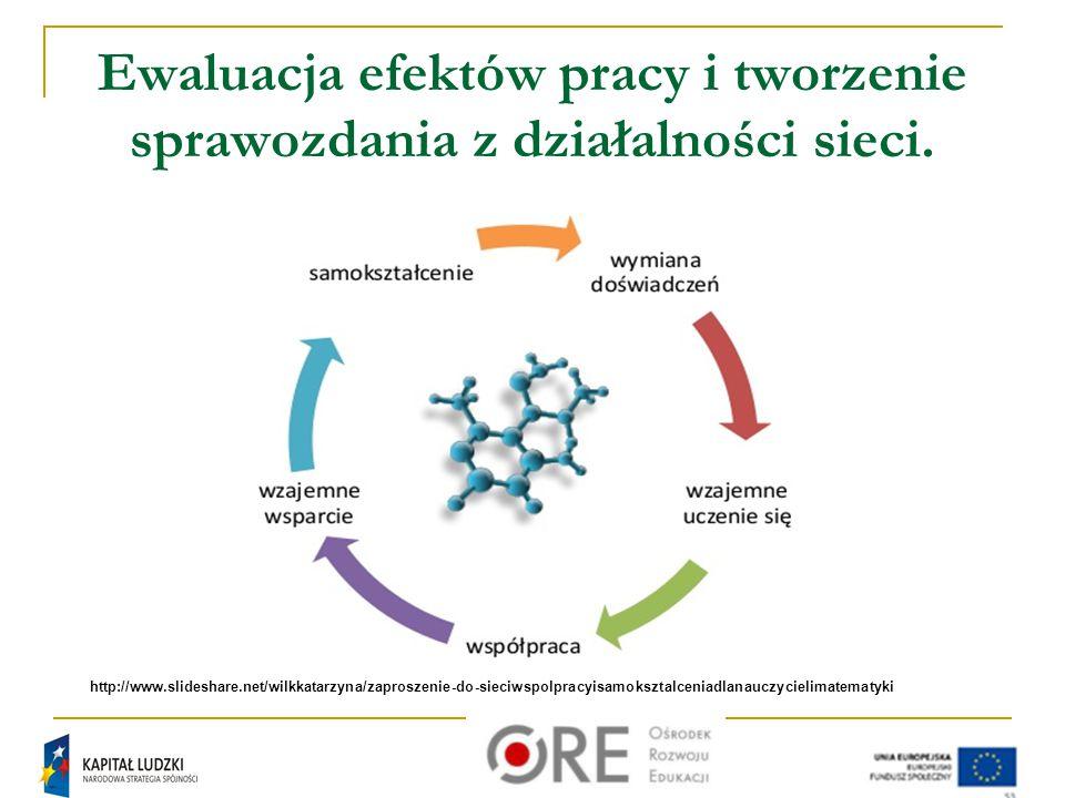 Ewaluacja efektów pracy i tworzenie sprawozdania z działalności sieci.
