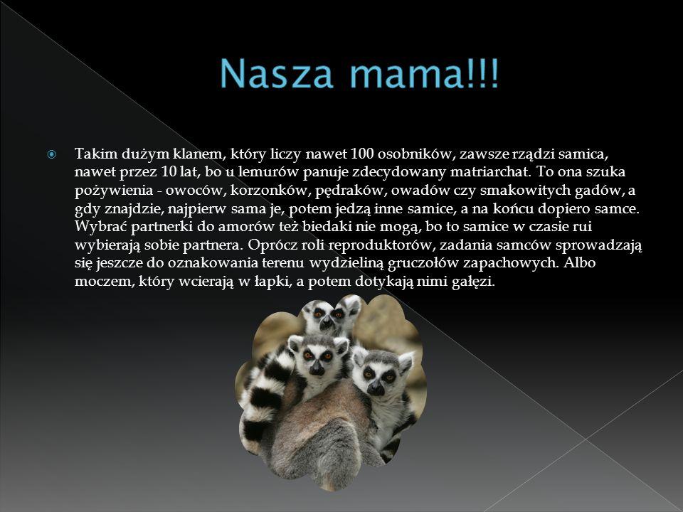 Nasza mama!!!