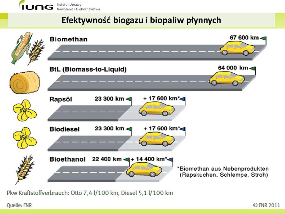Efektywność biogazu i biopaliw płynnych