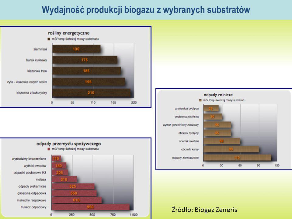 Wydajność produkcji biogazu z wybranych substratów