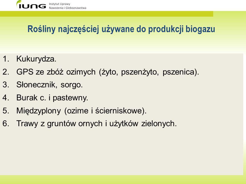Rośliny najczęściej używane do produkcji biogazu