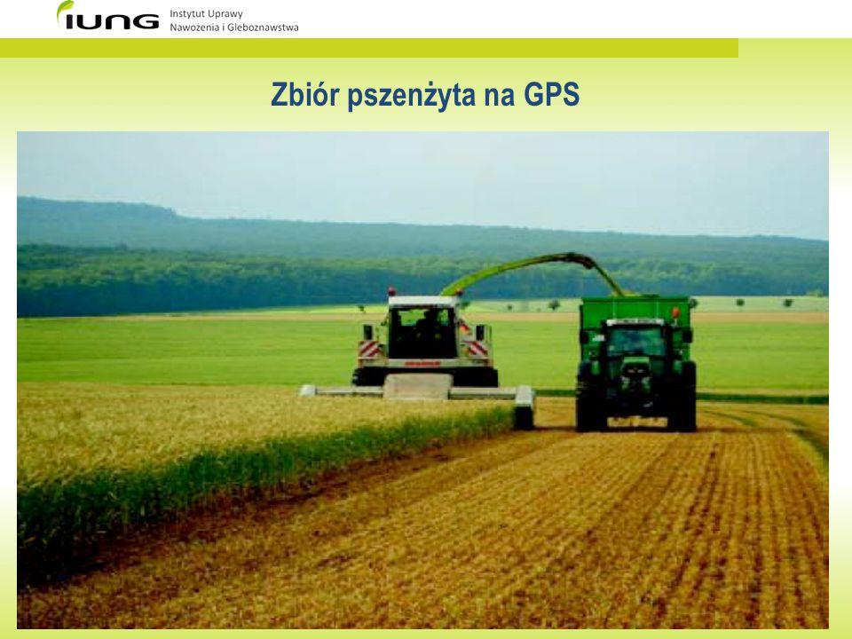 Zbiór pszenżyta na GPS