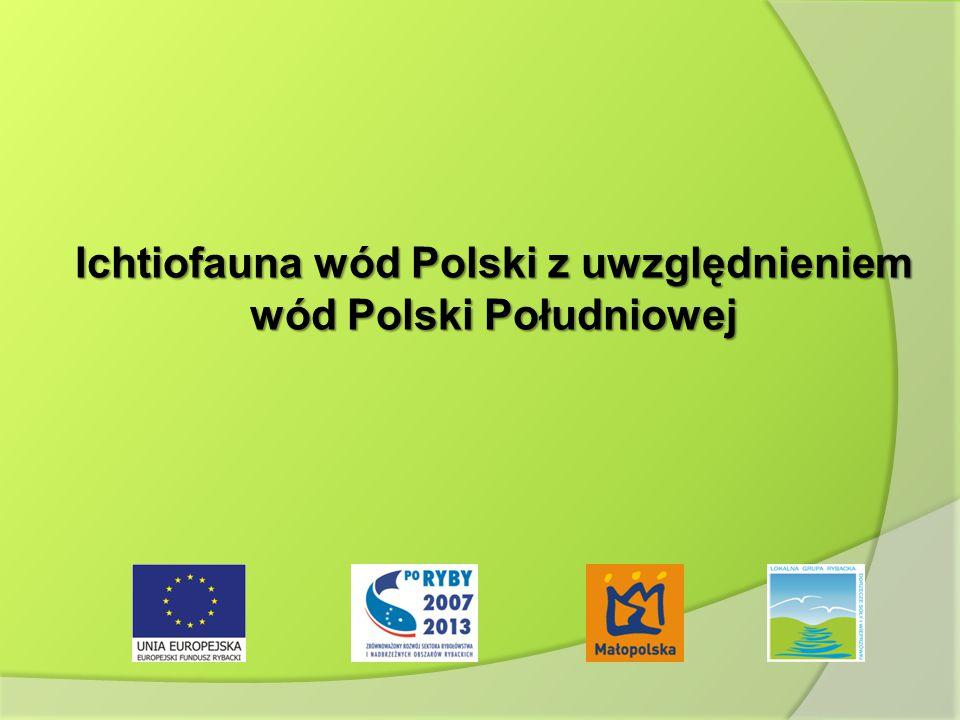 Ichtiofauna wód Polski z uwzględnieniem wód Polski Południowej