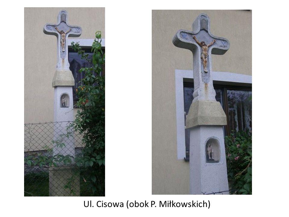Ul. Cisowa (obok P. Miłkowskich)