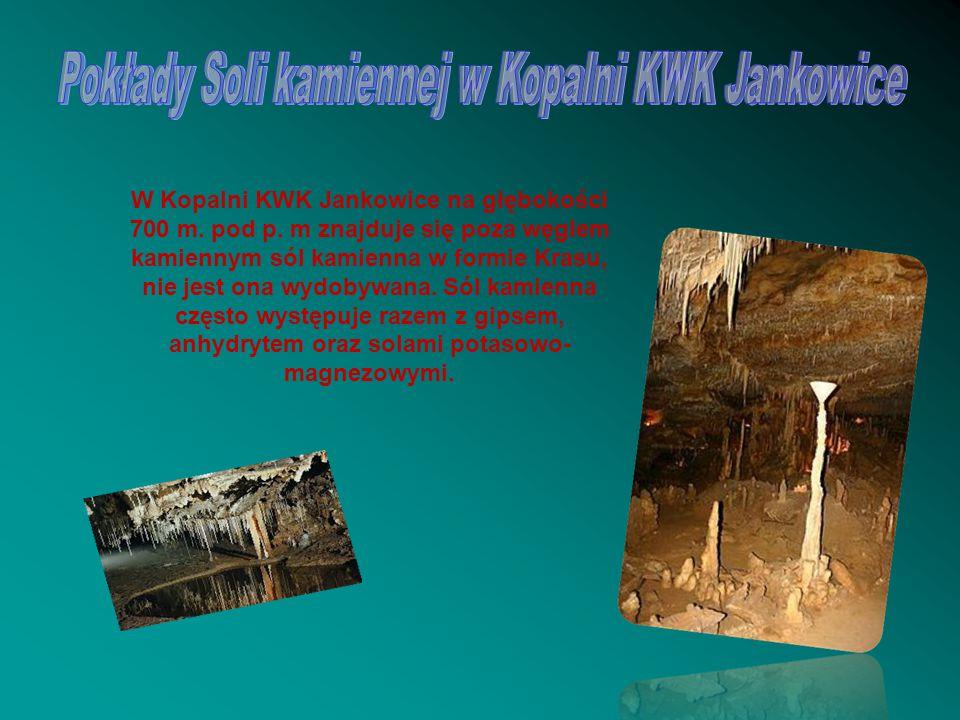 Pokłady Soli kamiennej w Kopalni KWK Jankowice