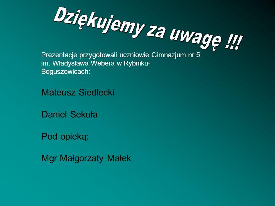 Dziękujemy za uwagę !!! Mateusz Siedlecki Daniel Sekuła Pod opieką:
