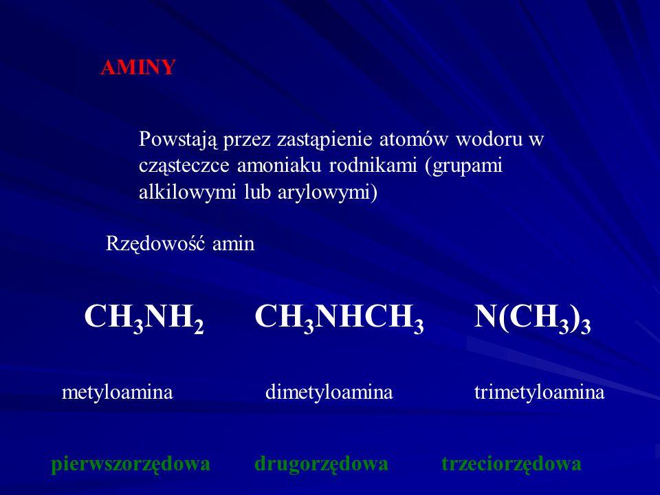 CH3NH2 CH3NHCH3 N(CH3)3 AMINY