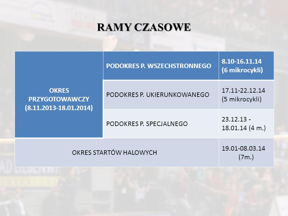 RAMY CZASOWE OKRES PRZYGOTOWAWCZY (8.11.2013-18.01.2014)