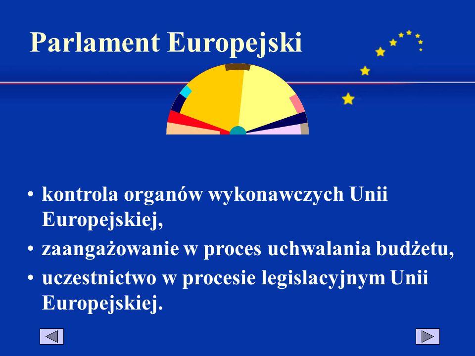 Parlament Europejski kontrola organów wykonawczych Unii Europejskiej,