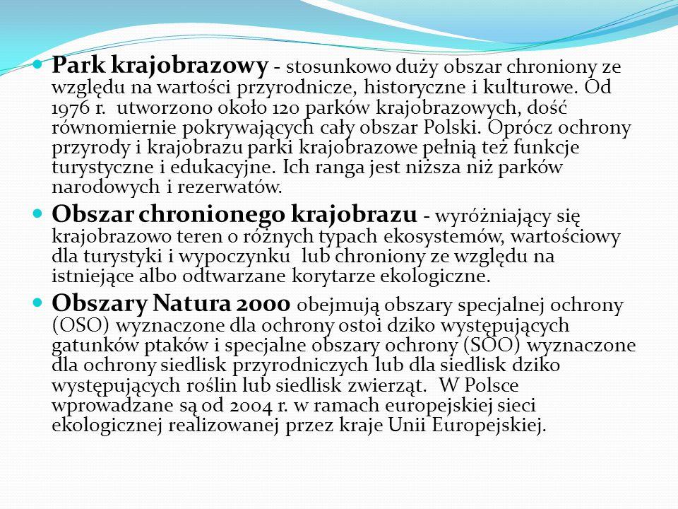 Park krajobrazowy - stosunkowo duży obszar chroniony ze względu na wartości przyrodnicze, historyczne i kulturowe. Od 1976 r. utworzono około 120 parków krajobrazowych, dość równomiernie pokrywających cały obszar Polski. Oprócz ochrony przyrody i krajobrazu parki krajobrazowe pełnią też funkcje turystyczne i edukacyjne. Ich ranga jest niższa niż parków narodowych i rezerwatów.