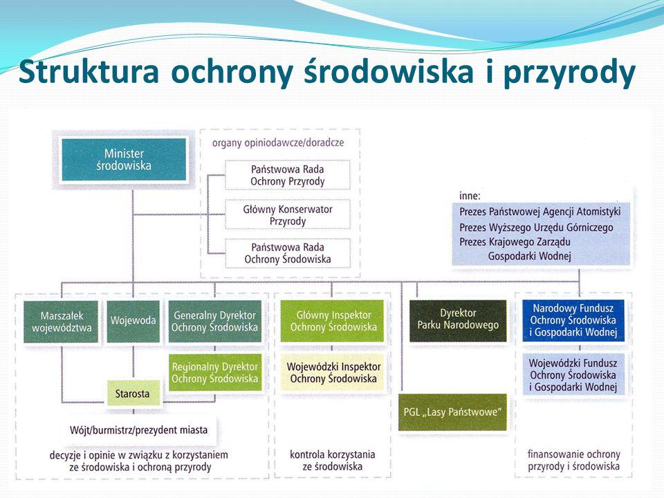 Struktura ochrony środowiska i przyrody