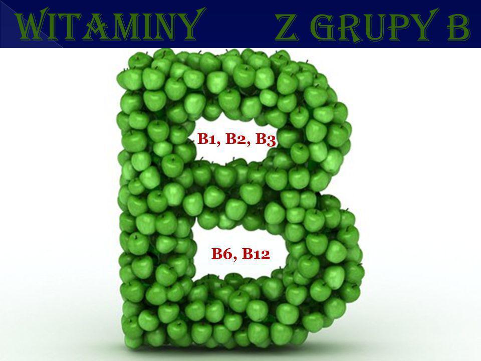 WITAMINY Z GRUPY B B1, B2, B3 B6, B12