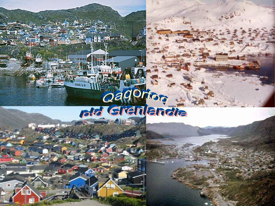 Qaqortoq płd Grenlandia