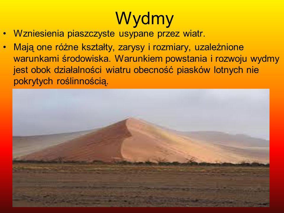 Wydmy Wzniesienia piaszczyste usypane przez wiatr.